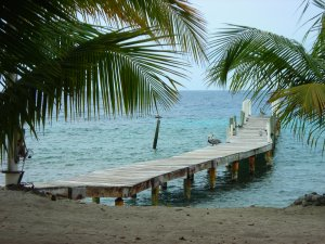 utila-honduras-vacations-coral-beach-018